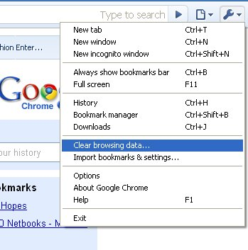 How To Clear Browsing History in Google Chrome - ThePicky